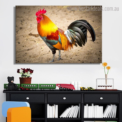 Colorful Cock Bird Modern Framed Effigy Photo Canvas Print for Room Wall Decoration