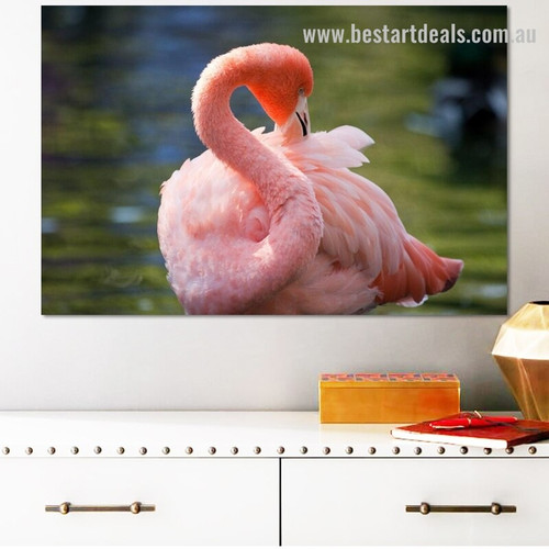 Beautiful Flamingo Bird Modern Framed Artwork Pic Canvas Print for Room Wall Onlay