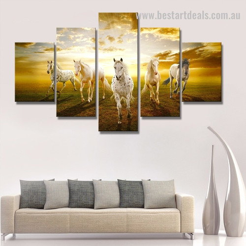 Five Horse Animal Nature Modern Framed Portraiture Photograph Canvas Print for Wall Hanging Decor