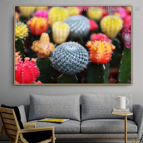 Cactus Blooms Botanical Modern Framed Artwork Pic Canvas Print for Room Wall Flourish