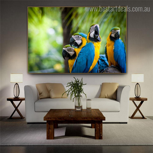 Blue and Yellow Macaw Bird Modern Framed Painting Image Canvas Print for Room Wall Flourish