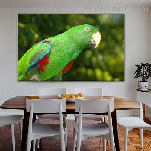 Eclectus Parrot Bird Modern Framed Painting Image Canvas Print for Room Wall Garniture