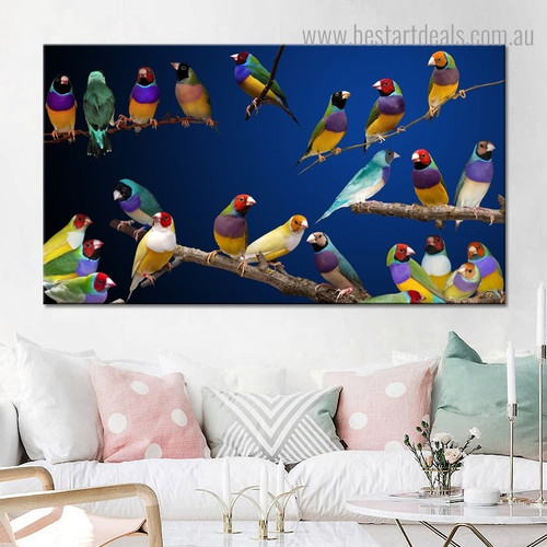 Tinted Gouldian Finch Bird Modern Framed Painting Photo Canvas Print for Room Wall Decor