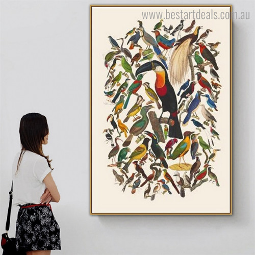 Black Beak Toucan Bird Abstract Modern Framed Artwork Photo Canvas Print for Room Wall Getup
