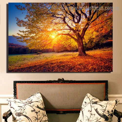 Beautiful Sunset Nature Framed Painting Picture Canvas Print for Room Wall Onlay