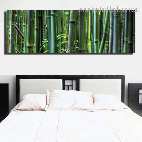 Green Bamboo Forest Landscape Nature Panoramic Framed Painting Image Canvas Print for Room Wall Assortment
