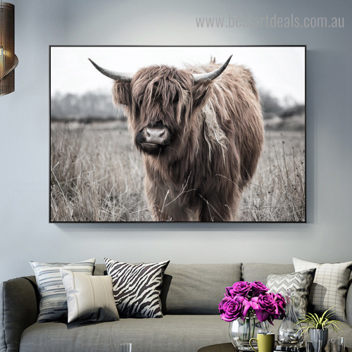 Highland Cow Grassland Animal Modern Framed Artwork Image Canvas Print for Room Wall Disposition