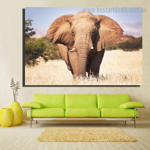 Brown African Elephant Animal Modern Framed Painting Photo Canvas Print for Room Wall Tracery