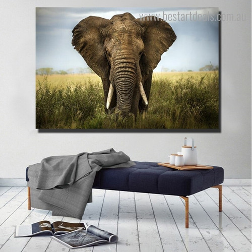 Feral Elephant Animal Modern Framed Smudge Picture Canvas Print for Room Wall Decor