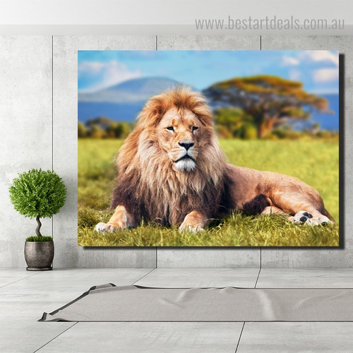African Lion Animal Modern Framed Smudge Image Canvas Print for Room Wall Assortment