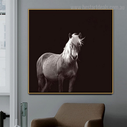 Mare Animal Modern Framed Smudge Photo Canvas Print for Room Wall Disposition
