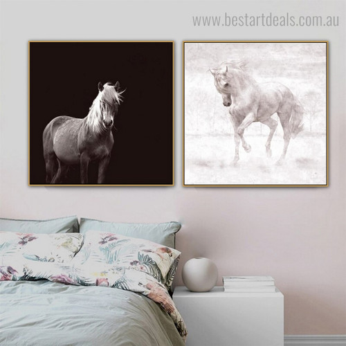 Two Stallions Animal Modern Framed Smudge Picture Canvas Print for Room Wall Finery