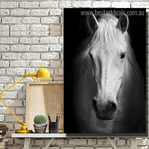 Horse Face Animal Modern Framed Artwork Photo Canvas Print for Room Wall Ornament