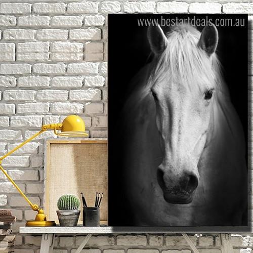 Horse Face Animal Modern Framed Artwork Photo Canvas Print for Room Wall Ornament