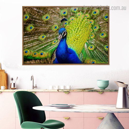 Colorific Peacock Bird Modern Framed Painting Picture Canvas Print for Room Wall Decor