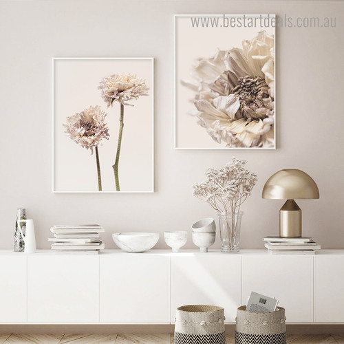Dried Scabiosa Abstract Floral Modern Framed Artwork Portrait Canvas Print for Room Wall Outfit