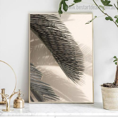 Palm Leaf Botanical Modern Framed Effigy Pic Canvas Print for Room Wall Assortment