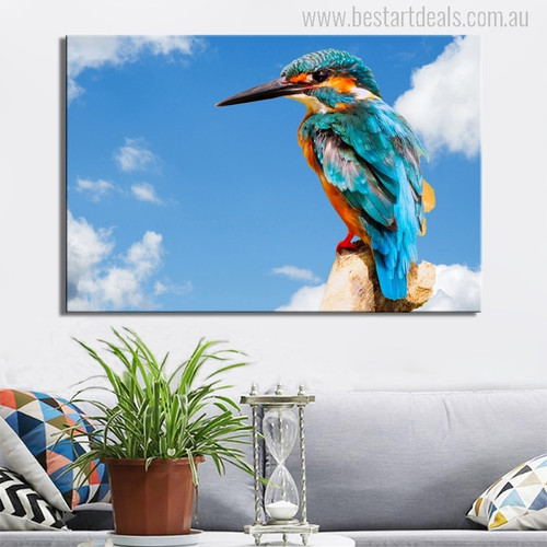Common Kingfisher Bird Modern Photo Print