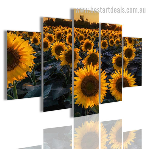 Helianthus Annuus Botanical Nature Modern Framed Smudge Picture Canvas Print