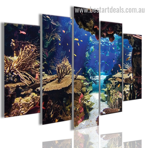 Underwater Coral Reef Animal Nature Landscape Modern Framed Artwork Image Canvas Print