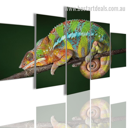 Chameleon Lizard Animal Modern Framed Artwork Image Canvas Print