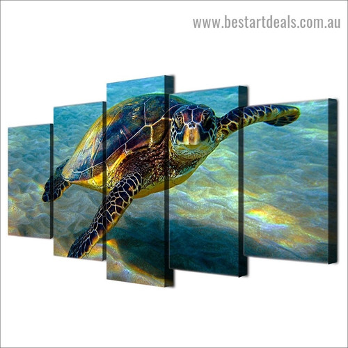 Deep Ocean Turtle Animal Modern Artwork Picture Canvas Print for Room Wall Adornment