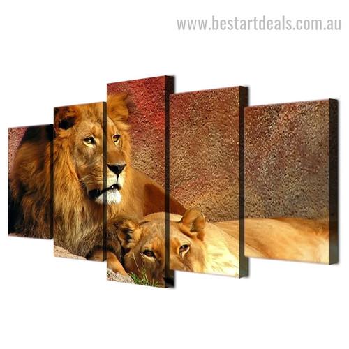 Mighty Lion Animal Landscape Modern Framed Effigy Photo Canvas Print