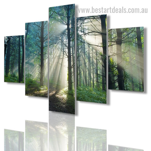 Deciduous Forest Trees Botanical Nature Modern Framed Effigy Photo Canvas Print