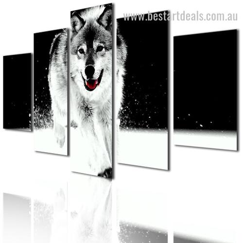 Grey Wolf Animal Landscape Modern Framed Effigy Pic Canvas Print