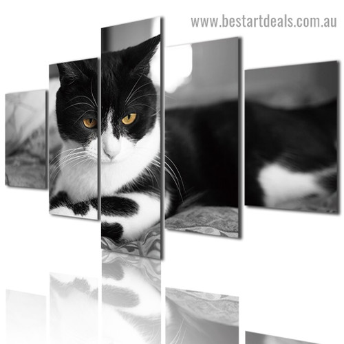 Cat Animal Modern Artwork Portrait Canvas Print for Room Wall Decoration