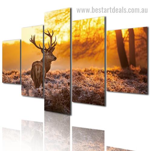Morning Deer Animal Nature Modern Framed Effigy Picture Canvas Print