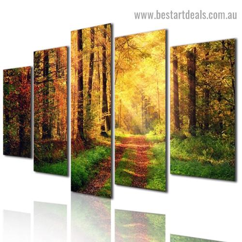 Autumn Sunshine Nature Landscape Modern Artwork Image Canvas Print for Room Wall Ornament