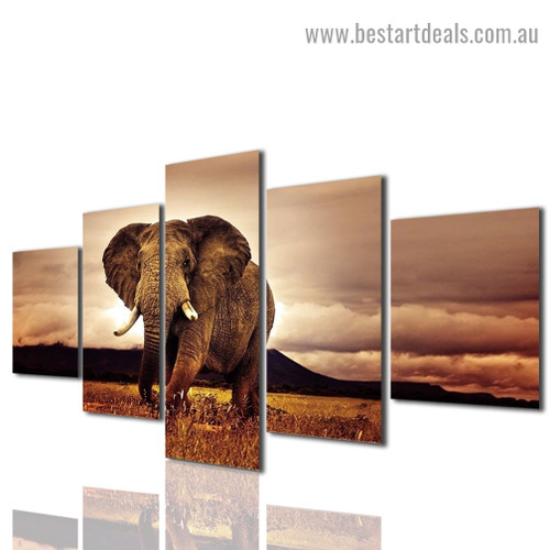 African Elephant Animal Landscape Modern Artwork Photo Canvas Print for Room Wall Adornment
