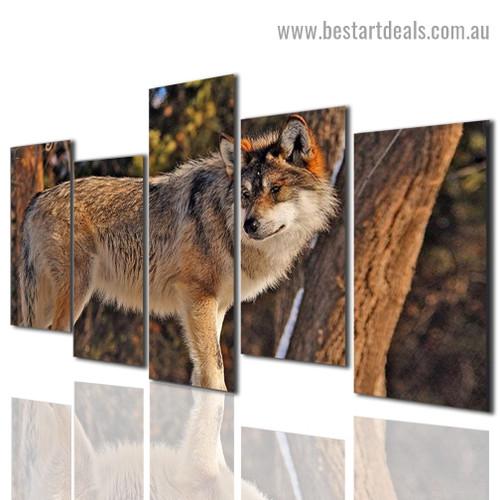 Wild Wolf Animal Modern Artwork Photo Canvas Print for Room Wall Adornment