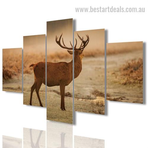 Caribou Animal Landscape Modern Framed Smudge Photo Canvas Print