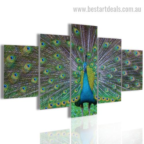 Beautiful Peacock Bird Modern Framed Effigy Photo Canvas Print