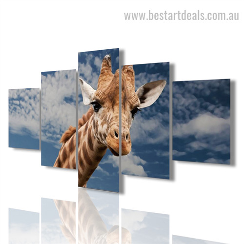 Giraffe Face Animal Modern Framed Painting Picture Canvas Print