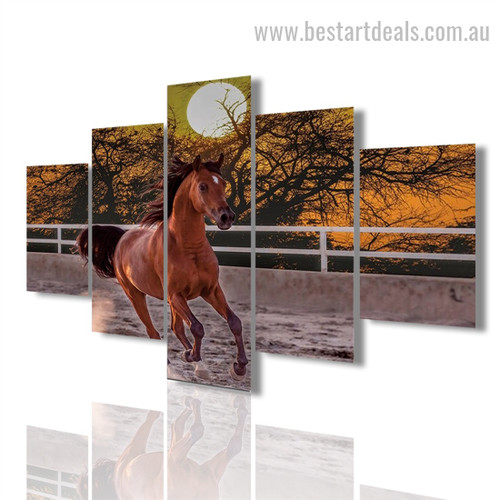 Running Mare Animal Modern Framed Painting Picture Canvas Print