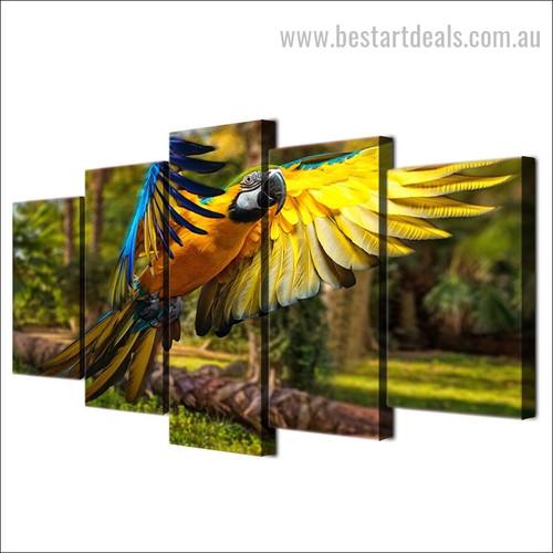 Psittacoidea Bird Nature Modern Multi Piece Split Artwork Photo Print