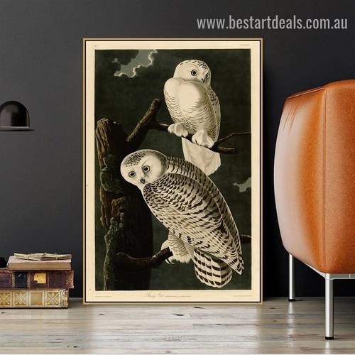 Snowy Owl John James Audubon Bird Botanical Ornithologist Reproduction Artwork Photo Canvas Print for Room Wall Decoration