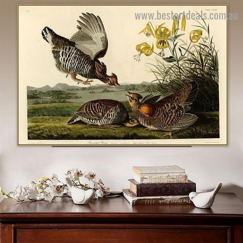 Pinnated Grouse John James Audubon Bird Landscape Ornithologist Reproduction Portrait Image Canvas Print for Room Wall Decoration
