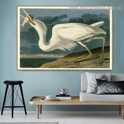 Great White Heron John James Audubon Bird Landscape Ornithologist Reproduction Portrait Image Canvas Print for Room Wall Ornament
