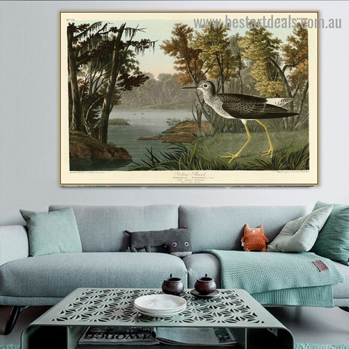 Yellow Shank John James Audubon Bird Landscape Ornithologist Reproduction Artwork Image Canvas Print for Room Wall Adornment