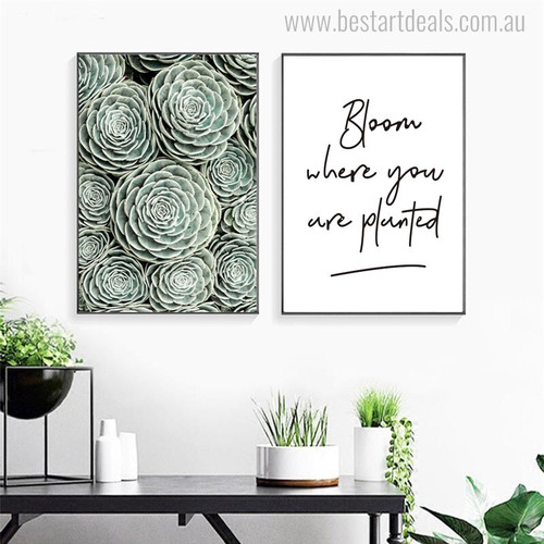 Succulent Plant Nordic Botanical Quotes Painting Print for Lounge Room Wall Onlay