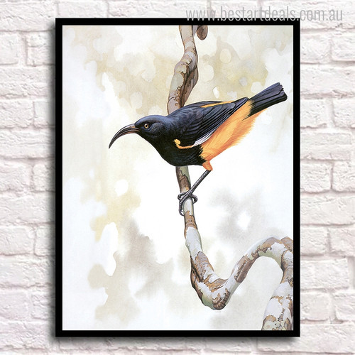 Ruby-Throated Bird Animal Modern Painting Canvas Print for Wall Decor