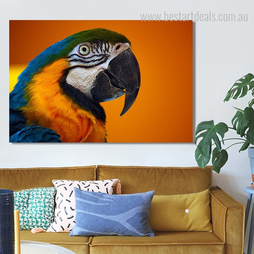 Macaw Bird Framed Modern Painting Image Canvas Print for Room Wall Garnish