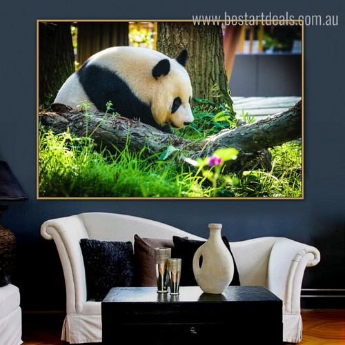 Panda Botanical Animal Modern Framed Resemblance Image Canvas Print for Room Wall Tracery