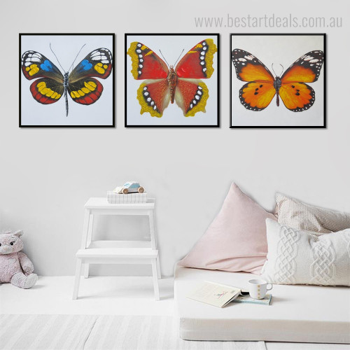 Polygonia and Viceroy Abstract Animal Modern Framed Smudge Photo Canvas Print for Room Wall Getup