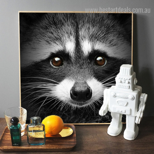 Raccoon Face Animal Modern Framed Painting Photo Canvas Print for Lounge Room Wall Getup