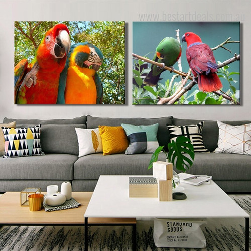 Eclectus and Macaws Bird Nature Framed Resemblance Image Canvas Print for Room Wall Decor